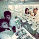 thumb-promovendi-research-onderzoek-wetenschap